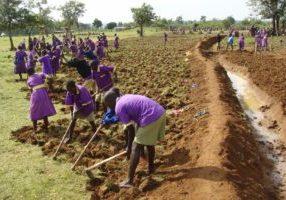 Permaculture,+Kenya,+Michael+Nickels,+School